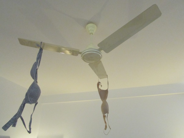 NUMBER 1: The bras hit the fan - great drier, but only on slow spin speed!