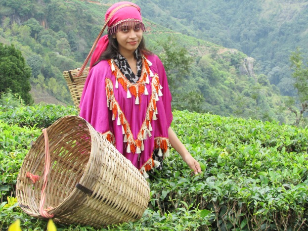 An Indian Tourist posing for a photo just above the tea plantation