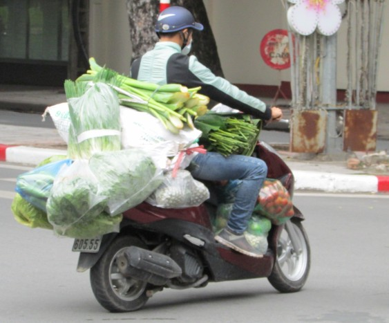 Most vegetables carried