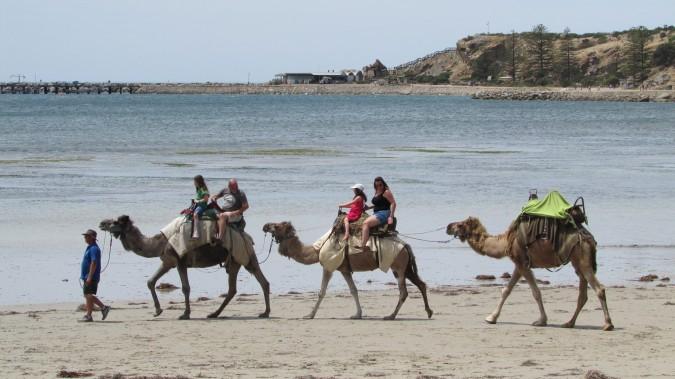 Lawrence of Arabia leading...