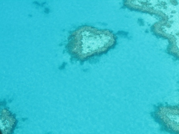 Heart Reef - for my loved one