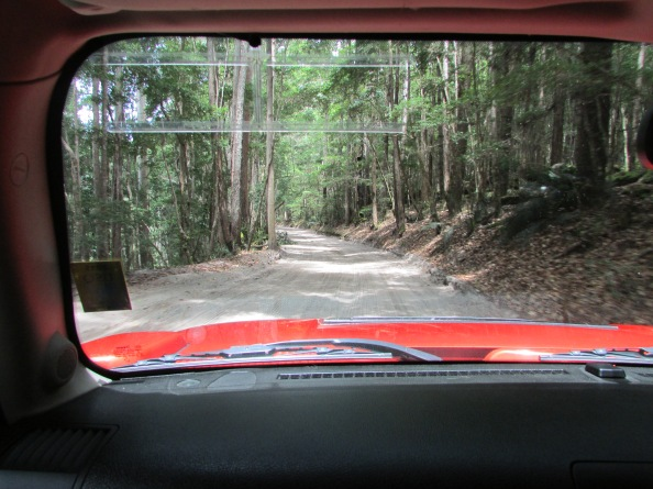 View from the front of the Hummer as we travel along sand tracks en-route to Mackenzie Lake