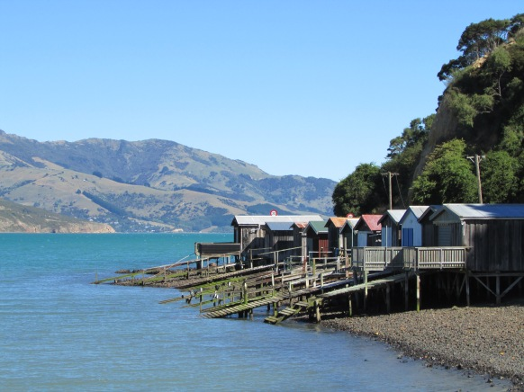 Postcard from NZ