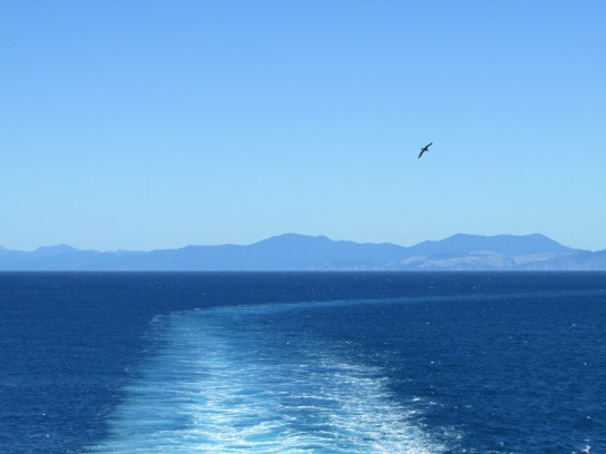 A fitting end as an Albatross does a little fly pass midway between the South (in the distance and North Island