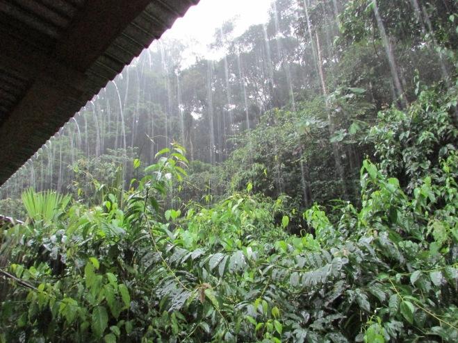 Rain, rain go away...