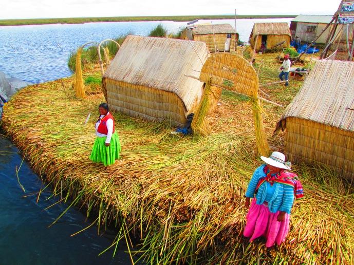 Reed Island Dwellers